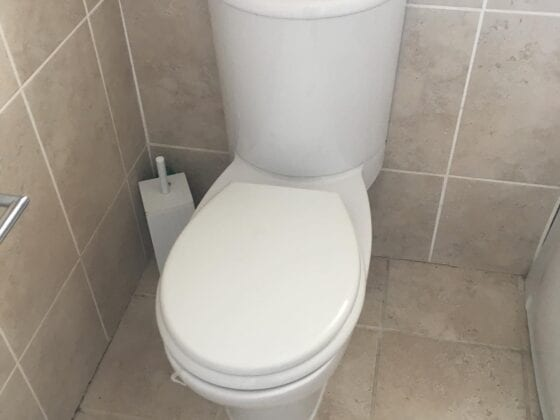 Replacement Toilet Back 1